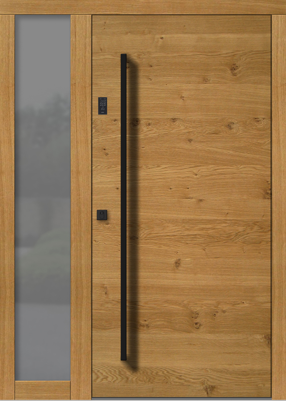 Holzhaustür H101+ST_4_V